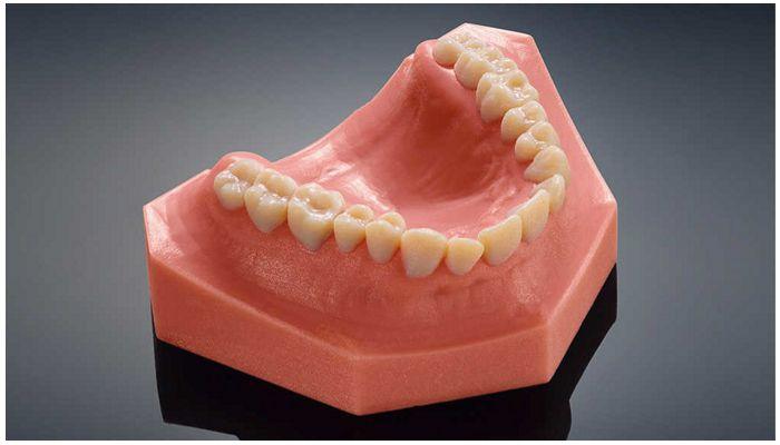 Трехмерная модель зубов